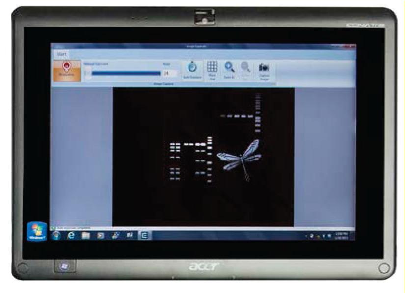 Enduro GDS Touch凝胶成像系统